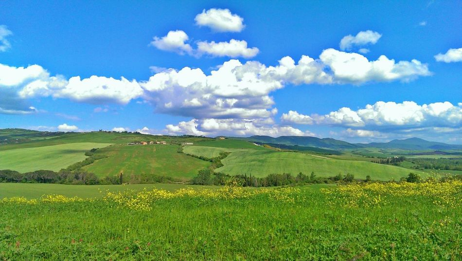 Landscape Cloud - Sky Blue Field Sky Agriculture Rural Scene Farm Nature Green Color Cloudscape Outdoors Beauty In Nature Day Grass Tree Love Tuscany Pienza Italy Tuscany