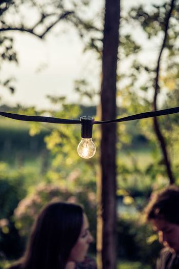Close-up of woman holding light bulb hanging on tree