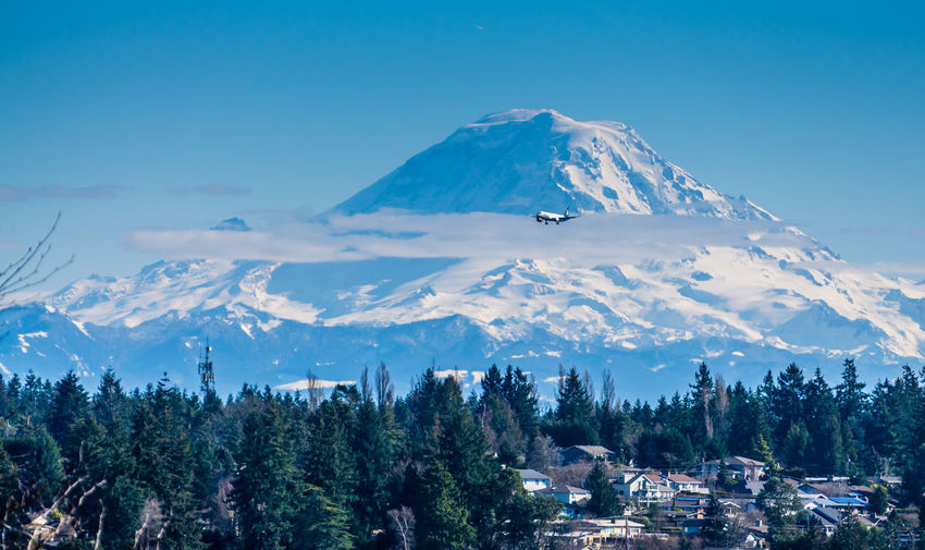 Mount Rainier and homes. Mountains Mountain Scenics - Nature Beauty In Nature Tree Sky Plant Winter Cold Temperature Tranquil Scene Snowcapped Mountain Tranquility Environment Nature Snow No People Landscape Mountain Peak Non-urban Scene Day Outdoors Mountain Range Homesweethome Mount Rainier