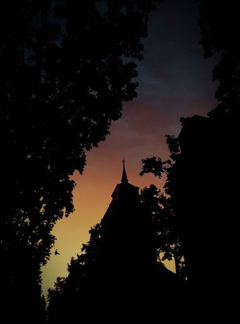 Cellphone Photography Sunset Madrid Rastro Low Angle View Silouette & Sky Trees Almost Abstract Pinnacle Travel