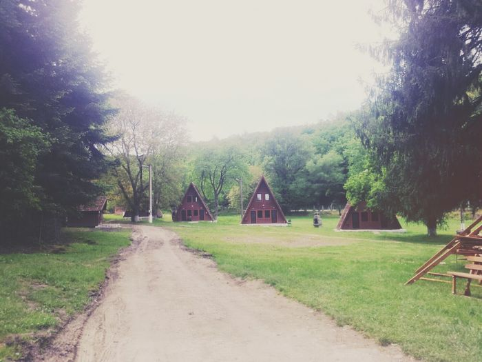 Camping Cabin In The Woods Trip Romania