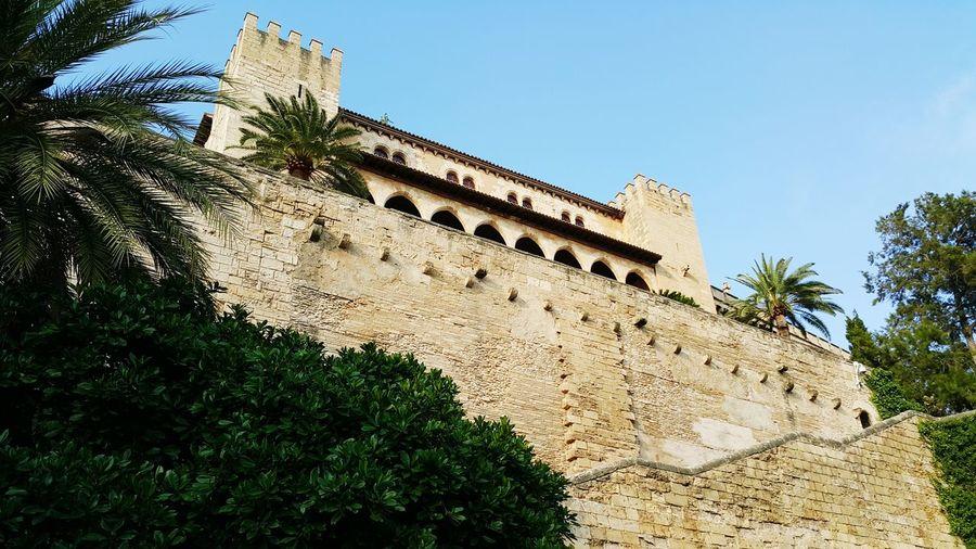 Mallorca❤️ Palma Catedral De Mallorca Architecture Sunlight No People Travel Destinations
