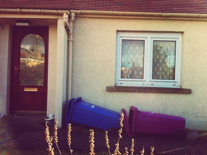 Sleeping Bins in Scotland Colour Everywhere