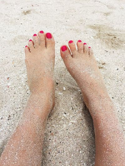 Two Feet Pink Pink Toenails Human Body Part Sand Body Part Human Foot Low Section barefoot Land Women One Person Nail Polish Real People Human Leg Beach Leisure Activity Nail Lifestyles Nature High Angle View Adult Human Limb