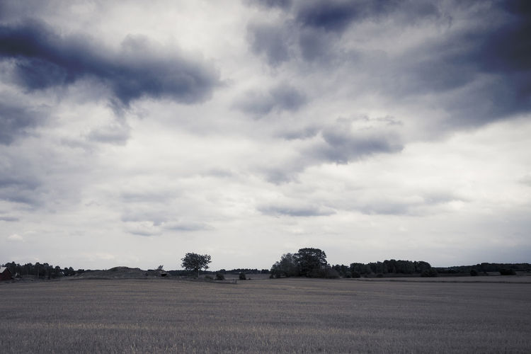 Scenic view of field against cloudy sky Nature Rural Scene Agriculture Sky Cloud - Sky Landscape Outdoors Scenics Scenics - Nature Field Tree Farm Blue Summer Autumn No People Season  Cloudscape Weather Non-urban Scene Meadow Land Environment Plant Tranquil Scene Beauty In Nature Tranquility Day My Best Photo