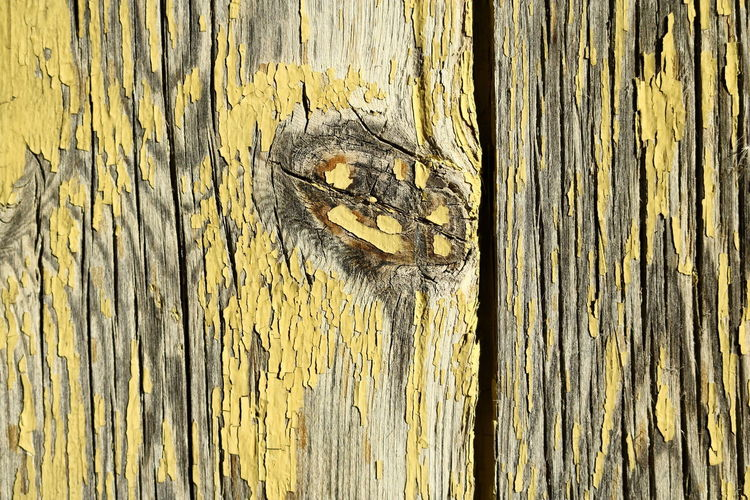 Weathered Yellow Shutter Closeup Decay Pattern Peeling Paint Rough Close-up Textured  Decayed Beauty Backgrounds Rustic Beauty Full Frame Yellow Color Weathered Wood Wood - Material Wood Knot EyeEmNewHere