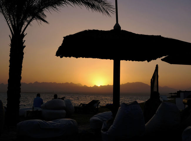 Beach Beauty In Nature Chilling Dusk Fun At The Beach Mountain Range Nature No People Outdoors Palm Tree Relaxation Scenics Sea Silhouette Sky Soma Bay Hurghada Sun Shades Sundowner Sunset Sunset Silhouette Tranquility Travel Destinations Vacations Water TCPM
