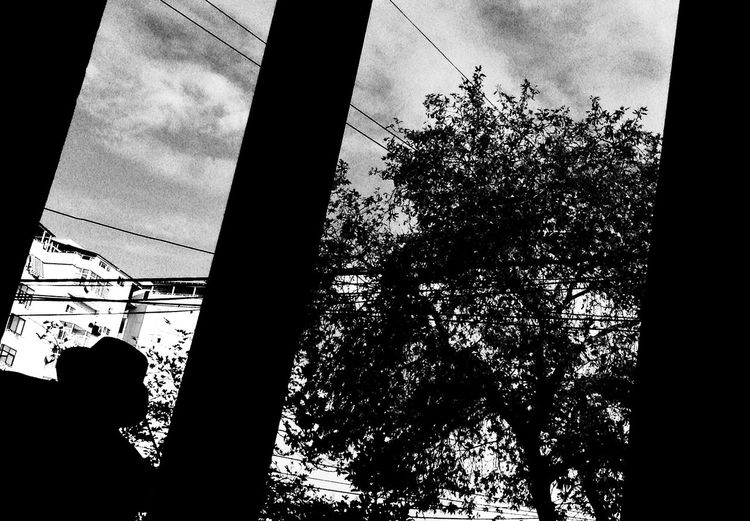 Shadow of a man and a Tree . Street Photography Streetphotography Monochrome Bw_collection People Blackandwhite Urban Odetomycity