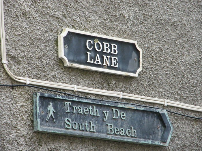Architecture Board Building Exterior Close-up Cobb Lane Communication Day Information Sign No People Number Outdoors Pembrokeshire Pembrokeshire Coast Pembrokeshire Coastal Path Signboard Street Name Sign Tenby Text Welsh Language