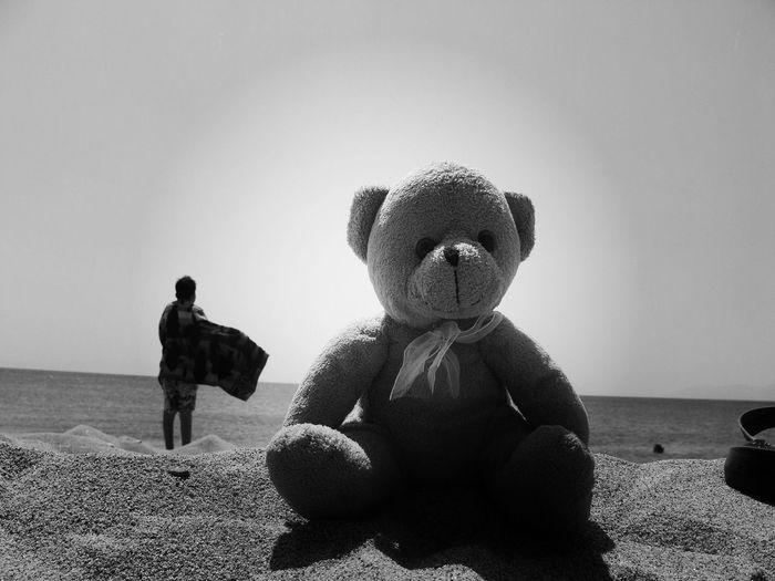 Teddy bear on beach