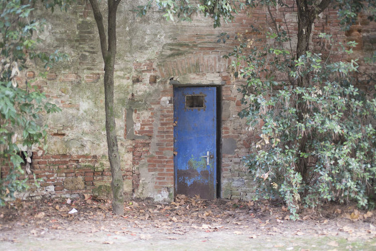 Abandoned Architecture Building Building Exterior Built Structure Day Door Entrance House Nature No People Open Outdoors Remote Tree