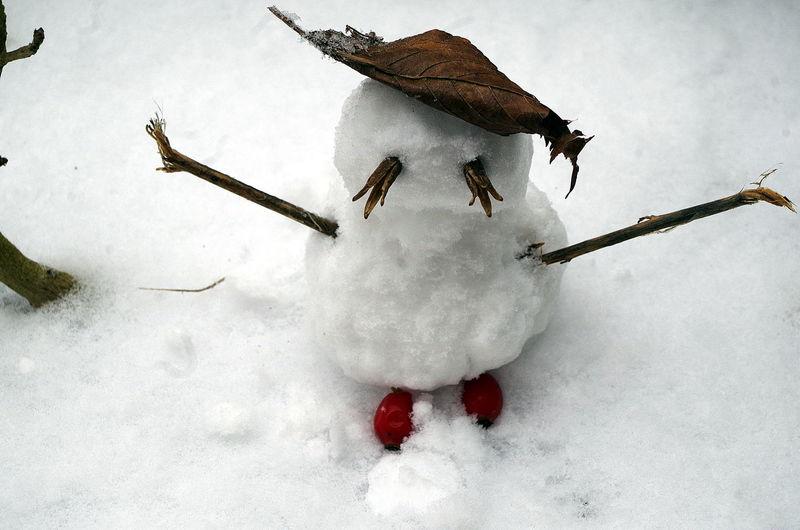 Kleiner Schneemann - Little Snowman Blade Blatt Cane Hagebutten Klein Little Rose Hips Schnee Schneemann Snow Snowman⛄ Winter Zweig