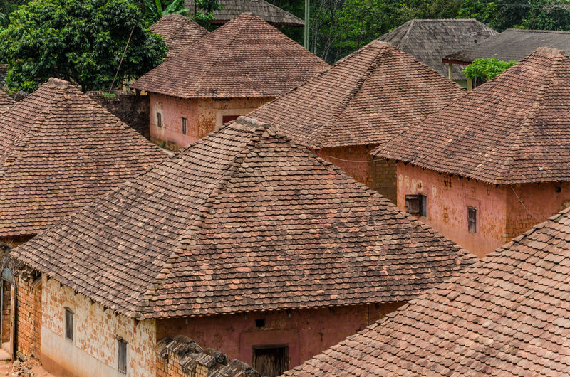 Traditional and historical palace of the Fon of Bafut with brick and tile buildings and jungle environment, Cameroon, Africa African Architecture Cameroon Home Africa Architecture Brick Building Building Exterior Built Structure Cameroon Highlands Day Full Frame House Nature No People Outdoors Palace Ring Road Roof Roof Tile Thatched Roof Tiled Roof