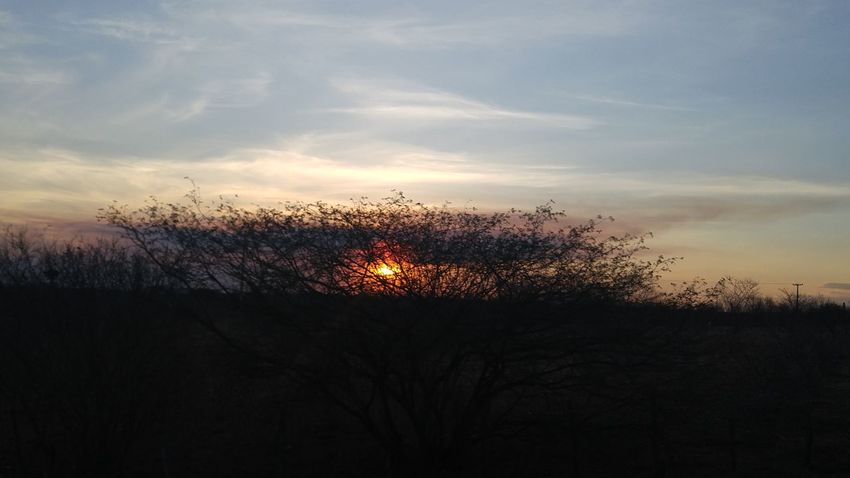 Sunset Silhouette Bare Tree Scenics Sky Sun Tranquil Scene Tranquility Back Lit Glowing Non-urban Scene Beauty In Nature Majestic Dark Cloud - Sky Branch Nature Atmosphere Outdoors Tourism