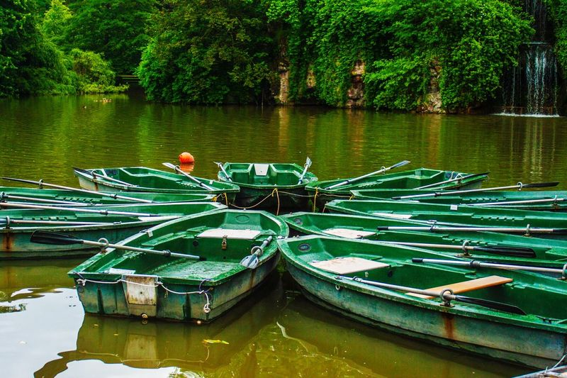Boats moored in lake against trees