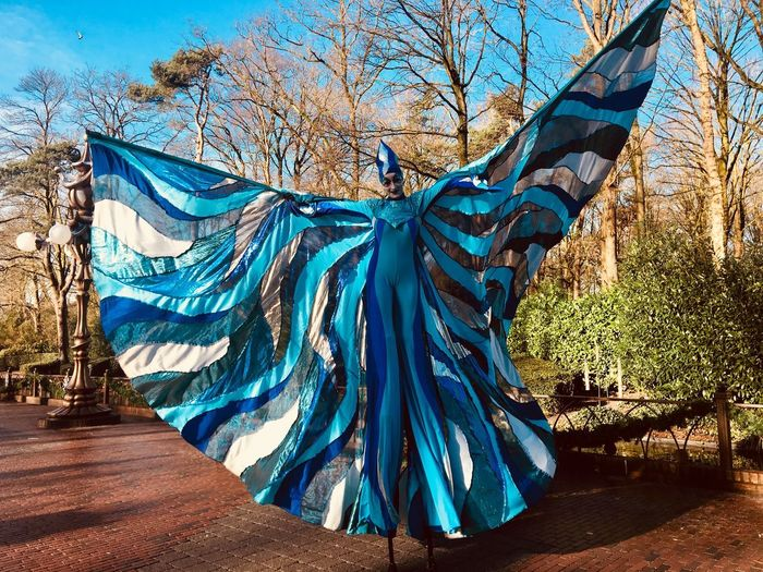 Stilt Walking Butterfly Stilt Walker Blue Tree Day Bare Tree No People Outdoors Nature