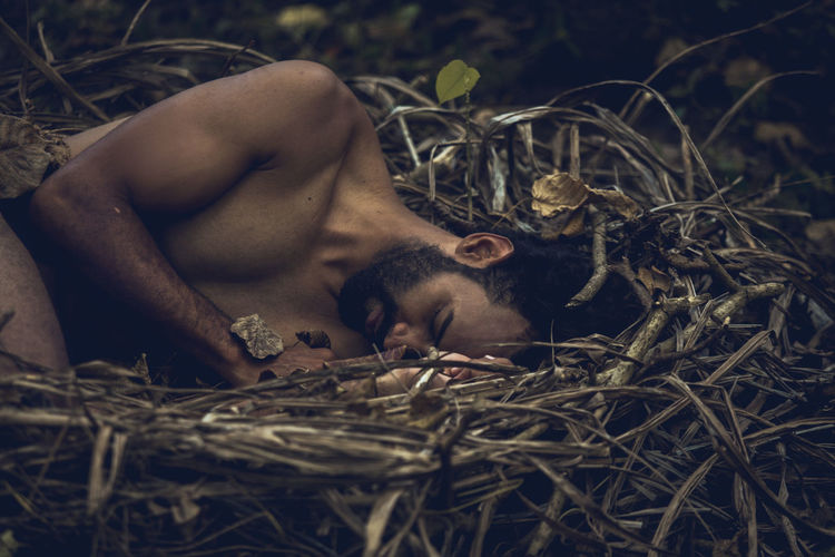 Close-up of man sleeping in bird nest