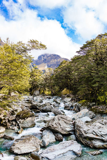 Waterfall in Routeburn track Beauty In Nature Cloud - Sky Day Flowing Flowing Water Growth Hike Land Mountain Nature No People Non-urban Scene Outdoors Plant Rock Rock - Object Routeburn Track Scenics - Nature Sky Solid Tranquil Scene Tranquility Tree Water