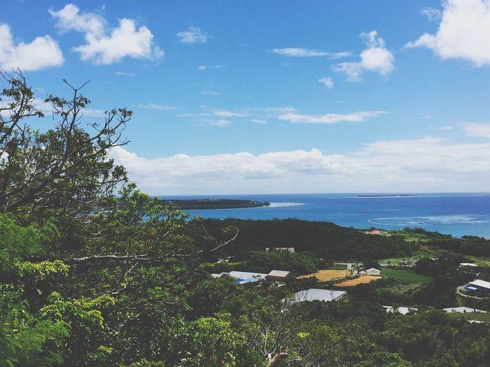 EyeEm Nature Lover Okinawa Japan