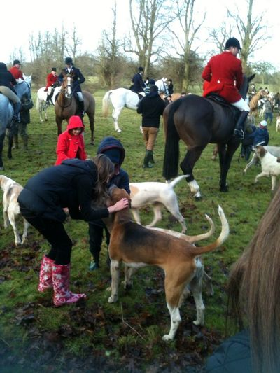 At The Hunt At Towcester Boxing Day