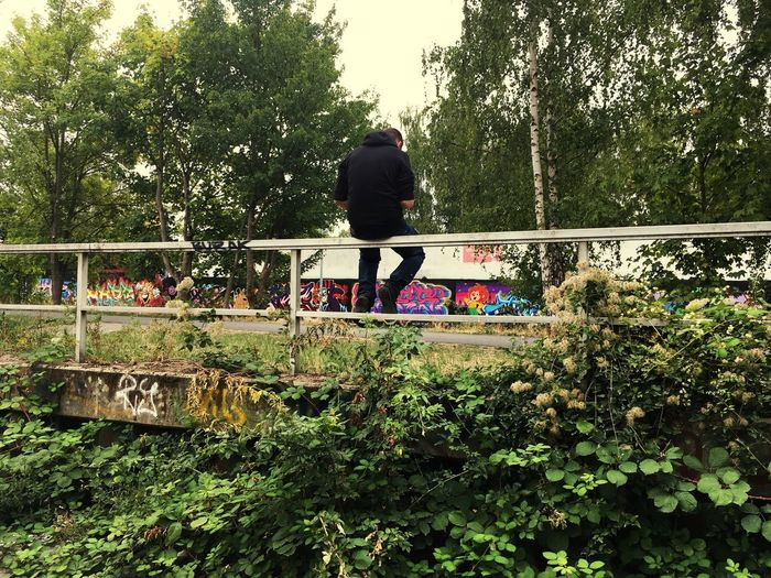 Rear view of man walking by plants in park