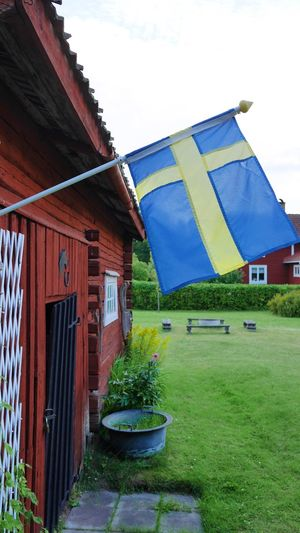 Architecture Building Exterior Built Structure Grass No People Outdoors Plant Day Flag Growth Green Color Nature Sky Tree Beauty In Nature Landscape Garden Countryside Country Life Countrylife Window Frame Sweden Dalecarlia Dalarna Swedish Flag