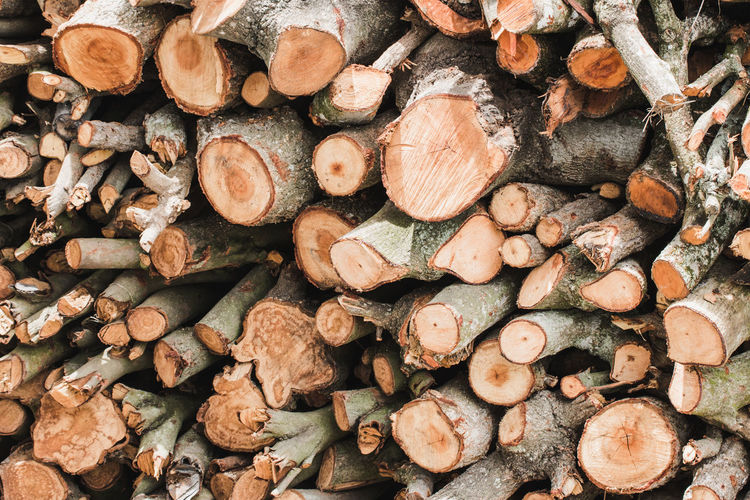 Abundance Backgrounds Deforestation Environmental Issues Firewood Forest Fuel And Power Generation Full Frame Heap Large Group Of Objects Log Lumber Industry Nature No People Outdoors Stack Timber Tree Wood Wood - Material Woodpile