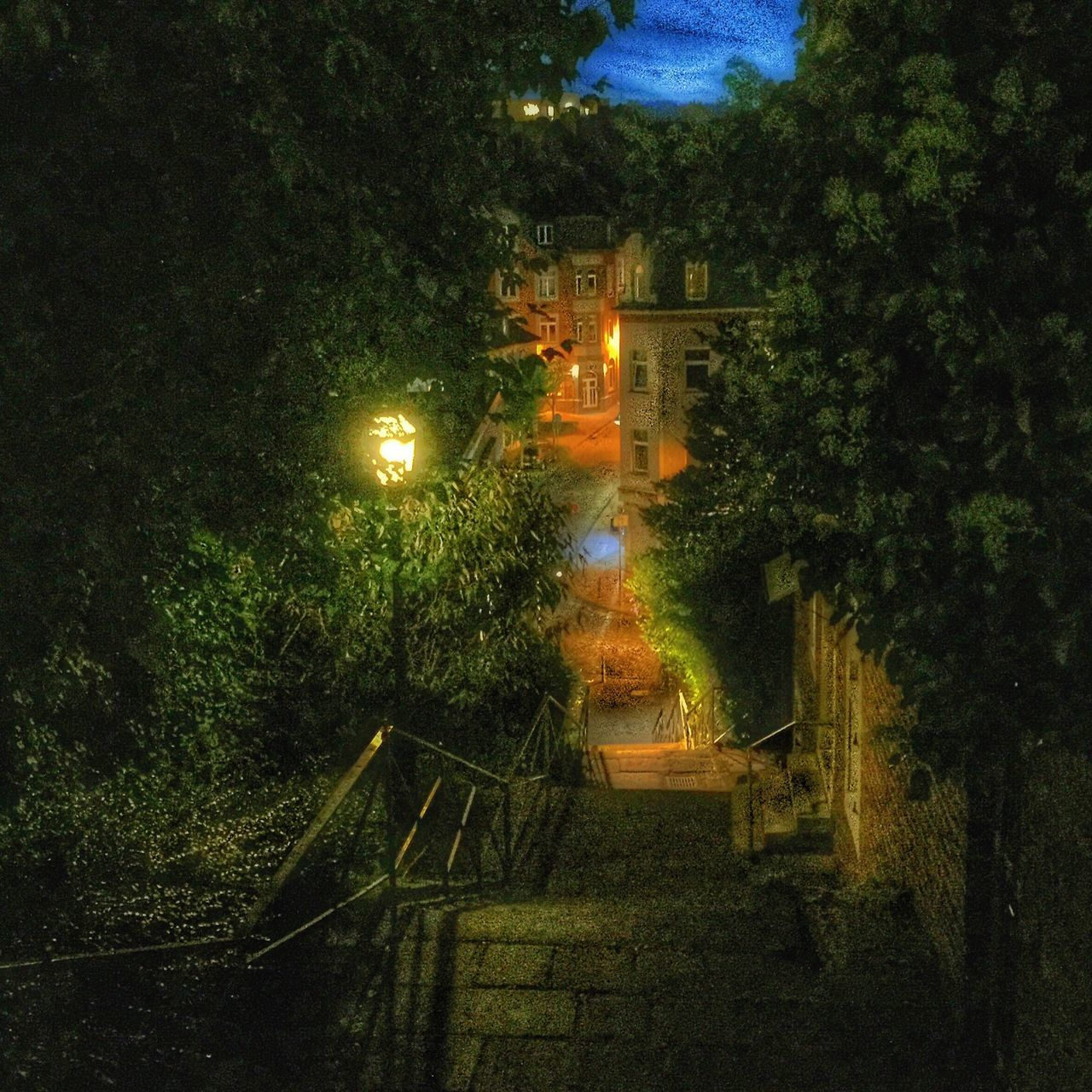 steps, night, steps and staircases, staircase, illuminated, tree, outdoors, no people, stairs, nature