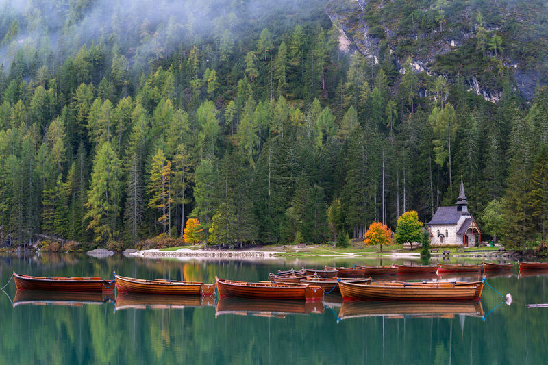 Panoramic view of boats in lake against trees in forest