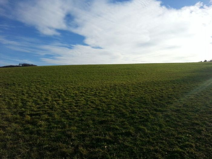 Mal dieses EyeMe testen... Landscape Green