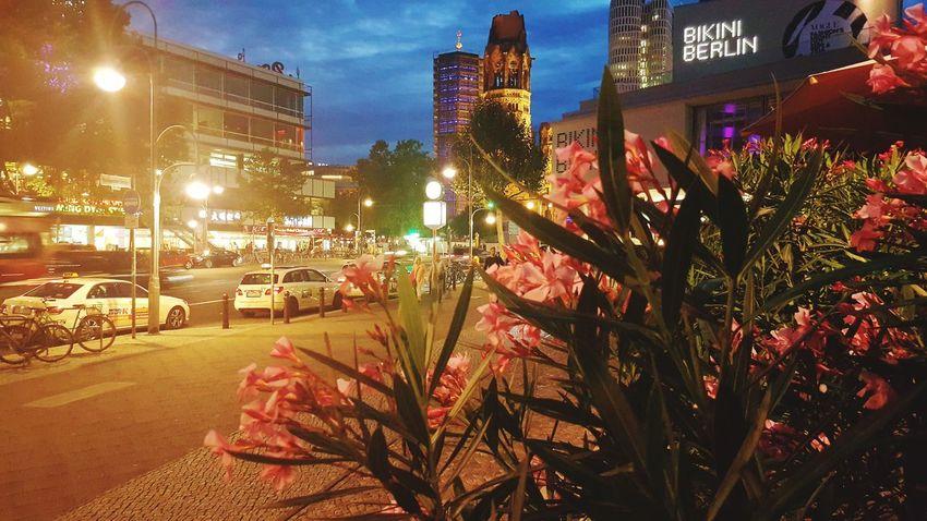 Berlin Night Breitscheidplatz Discover Berlin