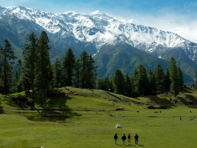A localy saying about the place...you are not heaven but less then... Your lap is meadow Faries . Nanga Parbat Base Camp. Fairy Meadow The Path Less Traveled By Pointer Footwear Beauty Of Pakistan Pakistani Traveller