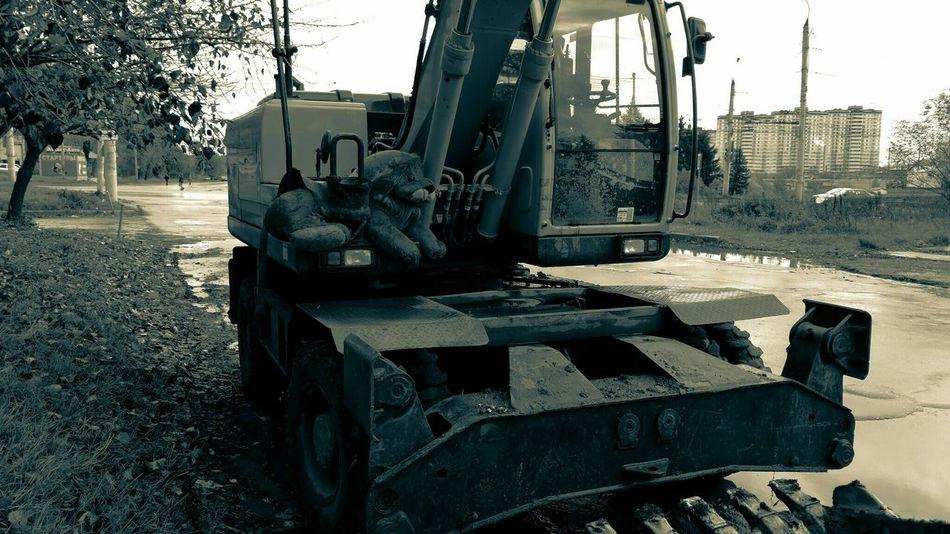 лев  экскаватор Russia грязь асфальт