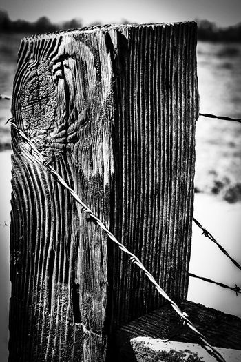 Barbed Wire Country Country Living Post Textured  Textures and Surfaces Wood Barbed Wire Fence Barbedwire Close-up Country Life Day Fence Fence Post Fence Post With Barbed Wire Focus On Foreground No People Outdoors Post Texture Wood - Material Wooden Wooden Post