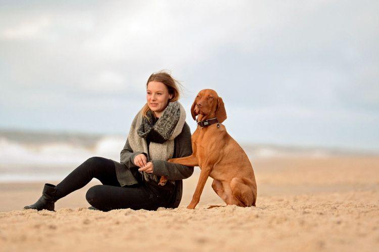 Mydogandme Love Vizsla Hund Strand Sylt Canine Dog Mammal Pets One Animal Domestic Animals Domestic Sand Nature Sky Women Beach Adult Happiness One Person Outdoors Purebred Dog Positive Emotion