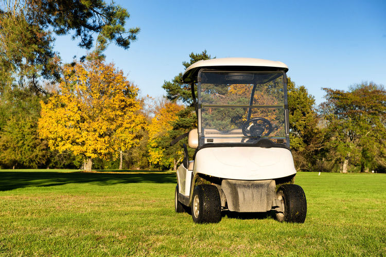 Golf Cart Course Green Club Carts Leisure Car Grass Nature Lifestyle Field Sport Activity Landscape Equipment Hole Game Golfing Outdoor Competition Transport Golfer Vehicle Hobby Fairway Beautiful Electric Tree Play Transportation Recreation  Lawn Buggy Park Outside Relax