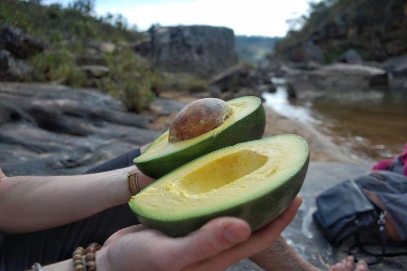 Close-up of man holding a huge avocado