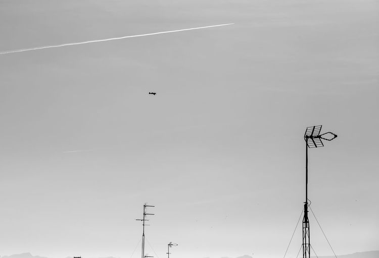 Sky Low Angle View Nature Technology No People Flying Street Day Animal Themes Transportation Street Light Animal Vertebrate Connection Bird Outdoors Cloud - Sky Mode Of Transportation Lighting Equipment Silhouette Vapor Trail Electricity  Power Supply Airshowphotography Airshow Blackandwhite Black And White