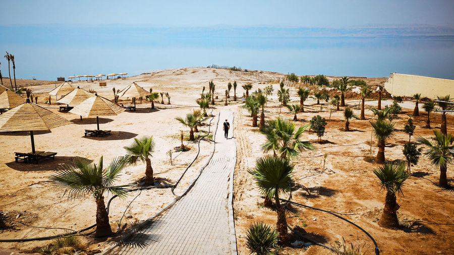 Man walking on a footpath directed to the sea. dead sea, jordan.