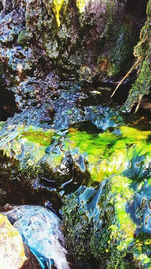 A cute little stream I found Taking Photos Check This Out Nature Walking Around River Rocks