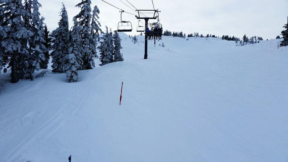 Oregon Snowboarding PNW Nature mt. bachelor