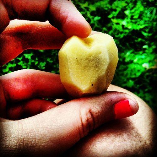Картошечка любит вас :D ужасманикюр сердечко картошечка страдаюхуйней