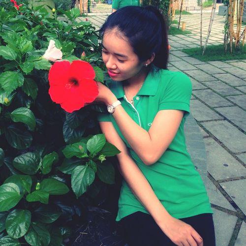 Bông bụp bự bự ;)))