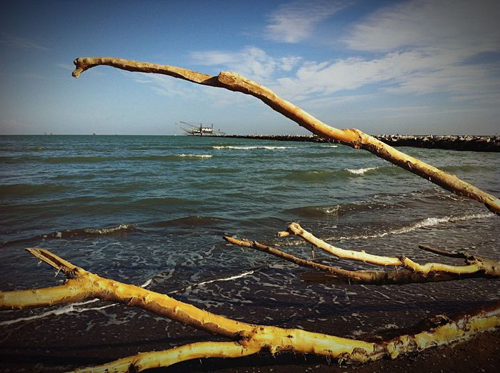 The EyeEm Facebook Cover Challenge Life Is A Beach Hello World Walking Around Sea