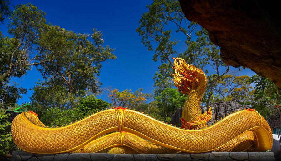 Close-up of yellow lizard on tree against sky