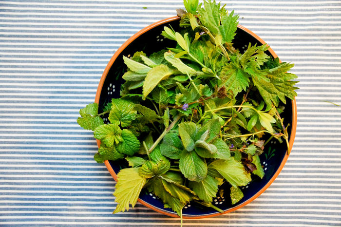 Close-up Day Food Freshness Green Color Growth Herb Indoors  Kräuter Leaf Nature No People Plant Potted Plant Striped Table Tea Tee