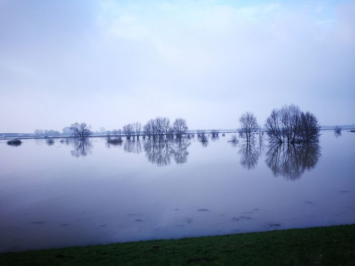 the river Waal near Nijmegen. high tides january 2018 Reflection Reflections In The Water Blue Blue Water Lake Reflection Tranquility Tranquil Scene Fog Nature Cold Temperature Beauty In Nature Winter No People Landscape Outdoors Tree Water Scenics Day Sky