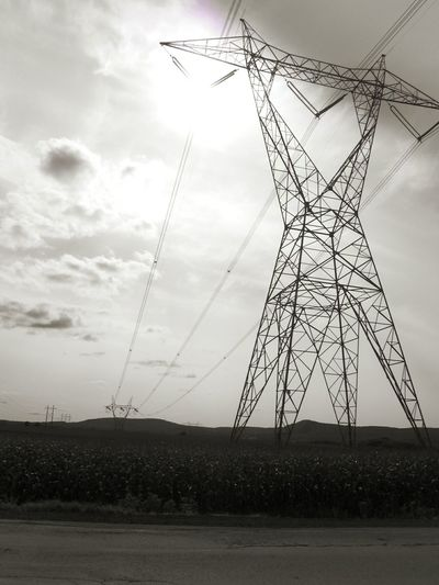Shades Of Grey Sunlight Electricity  Cornfield Black&white Learn & Shoot: Layering