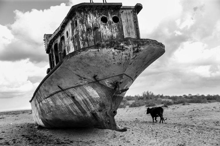 Damaged boat on beach against sky