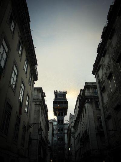 City City Life